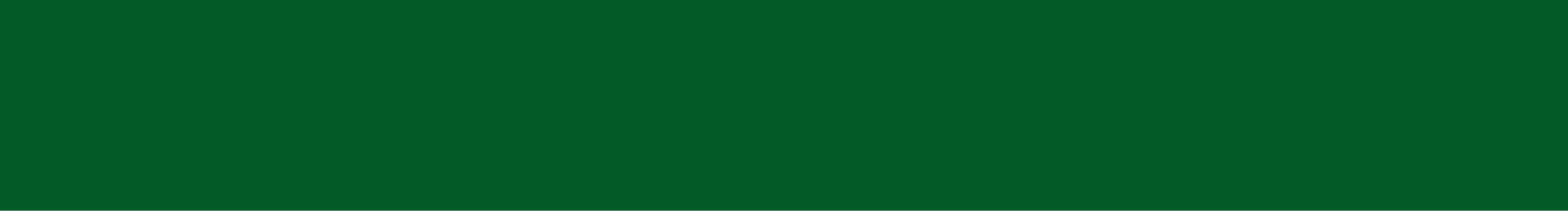 franja_verde