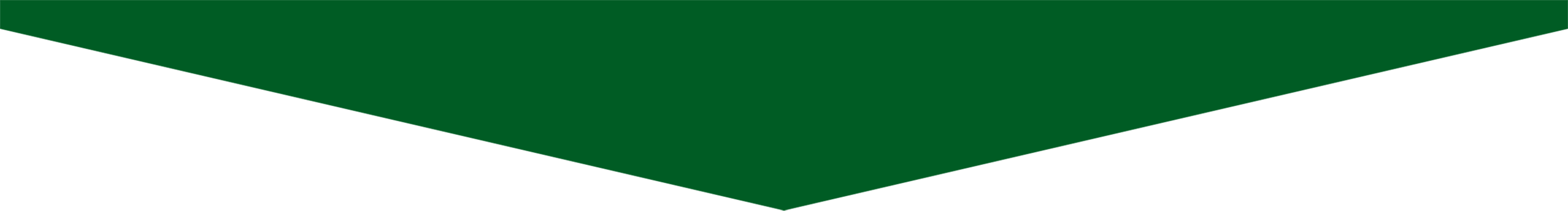 franja_verde4
